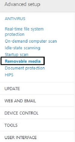 ESET Advanced Setup Antivirus, Removable Media