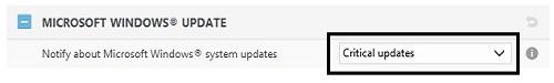 ESET Advanced Setup Tools, Windows Update Setting Choices