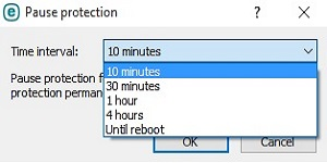 ESET Pause Protection, Time Interval