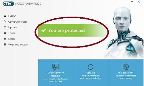 ESET Program, Activaion Success