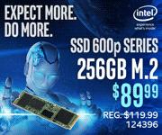 Intel SSD 600p Series 256GB M.2 - $89.99